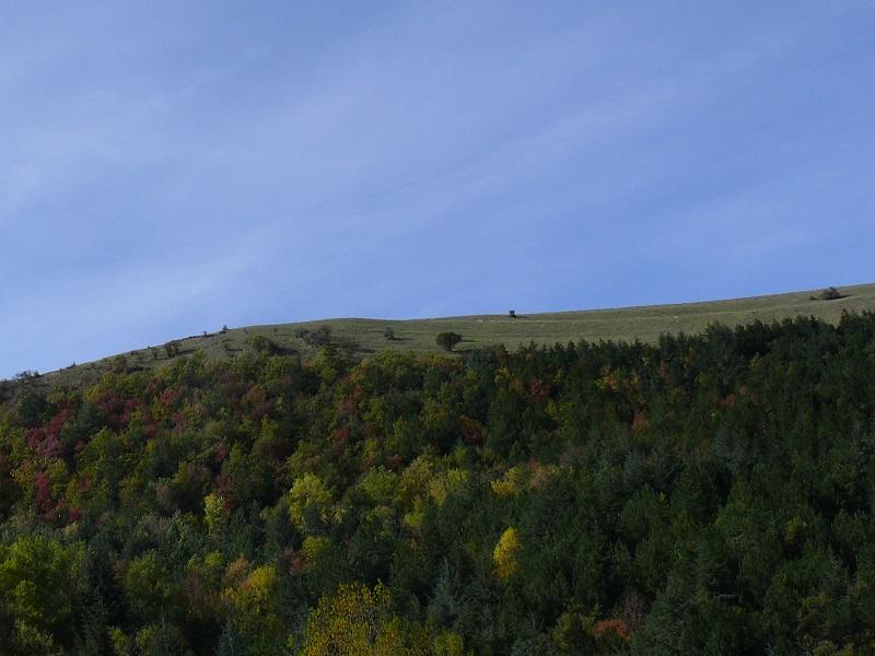 Monti Dauni e Sentiero Frassati