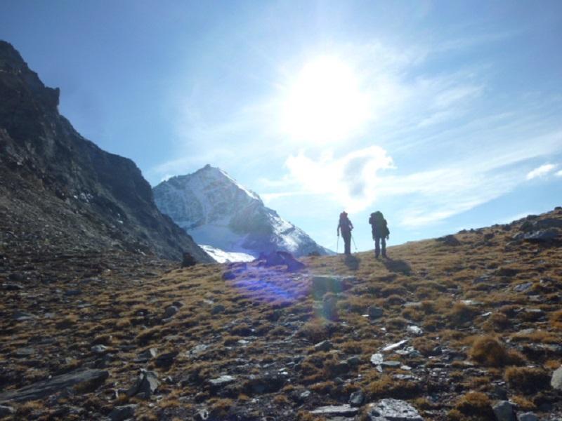La Desarpa, dal Monte alla Valle con i pastori