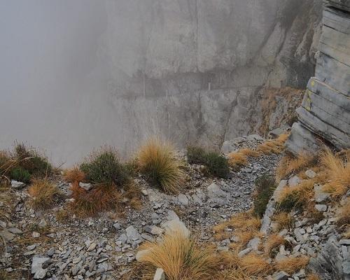 Un sentiero alpino che profuma di mare
